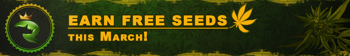 Earn Free Feminized Seeds At Rhino this March!