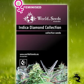 Indica Diamond Collection thumbnail