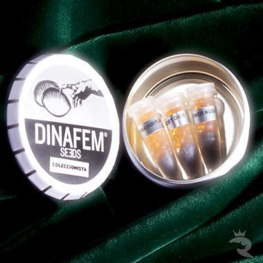 DinaFem Mix Pack #4