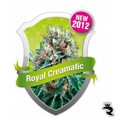 Royal Creamatic