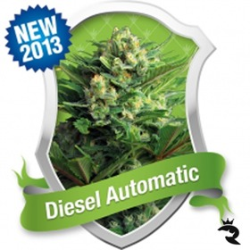 Diesel Automatic thumbnail