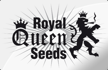 Royal Queen Seeds Feminized