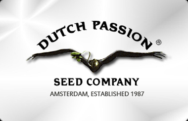 Dutch Passion Feminized