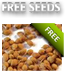 Free Cannabis Seeds For All